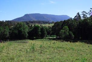 Lot 2a 198 Gungas Road, Nimbin, NSW 2480