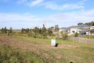 Lot 401 Warden Close, Bolwarra Heights, NSW 2320
