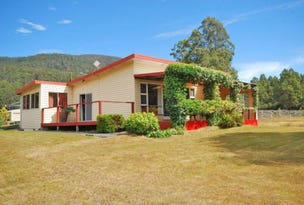 2847 Gordon River Road, Tyenna, Tas 7140