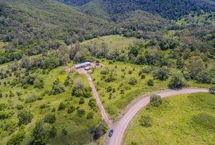 91 Forestry Road, Brandy Creek, Qld 4800