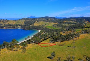 69 Dunn Drive, Surveyors Bay, Tas 7116