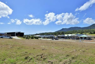 1 Frangipani Court, Cannon Valley, Qld 4800