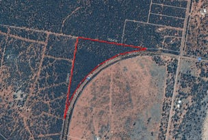 Lot 2 Diamantina Developmental Road, Charleville, Qld 4470