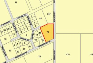 Lot 748, 79 Omdurman Street, Wagin, WA 6315