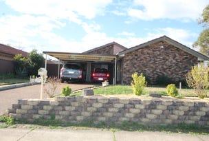 13 Hinchinbrook Drive, Hinchinbrook, NSW 2168
