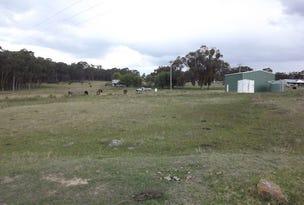 Lot 318, Bates Road, Torrington, NSW 2371