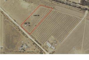 Allotments 31,32 & 34 Martin Terrace, Kadina, SA 5554