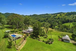 478 Tuntable Creek Road, The Channon, NSW 2480