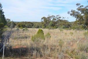 * Scrubby on Yanda, Cobar, NSW 2835