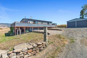 134 Cawthorns Lane, Macquarie Plains, Tas 7140