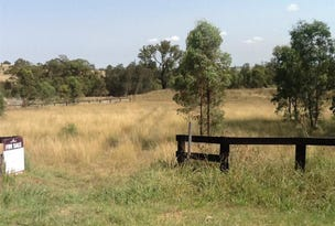 Lot 513 Billabong Close, Muswellbrook, NSW 2333