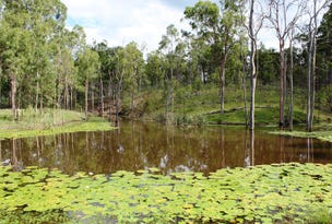 Lot 4 Tooloorum Road, Bryden, Qld 4312