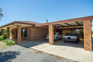 113 Twenty Third Street, Renmark, SA 5341