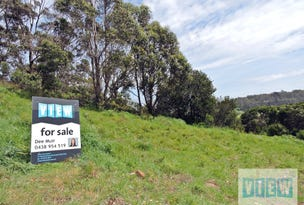 1 Midway Lane, Sulphur Creek, Tas 7316