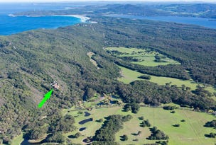 Lot 135 Eden Road, Youngs Siding, WA 6330