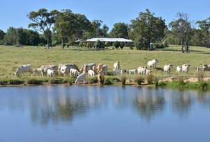 928 Bruxner Way, Tenterfield, NSW 2372