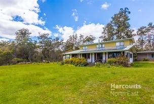 338 Gillespies Road, Nabowla, Tas 7260