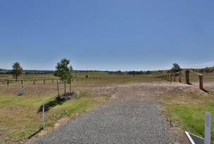 Radford Park - Lot 20 Pyrus Ave (off Elderslie Rd), Branxton, NSW 2335
