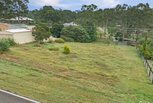 1339 Clarencetown Road, Seaham, NSW 2324