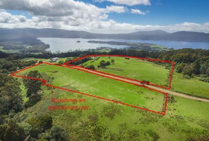 199 Lookout Road, Port Arthur, Tas 7182