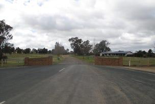 20 MULUMBAH ROAD, Deniliquin, NSW 2710