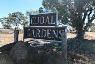 Lot 14, Rodda Drive, Cudal, NSW 2864