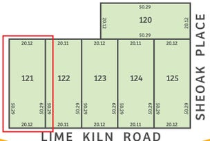 Lot 121 Lime Kiln Rd, Tailem Bend, SA 5260