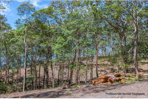 Lot 4/106 Wongawallan Road, Tamborine Mountain, Qld 4272