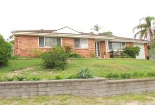 88 Auklet Road, Mount Hutton, NSW 2290