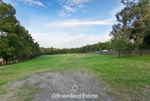 Lot 2/40 Newton Avenue, Langwarrin South, Vic 3911