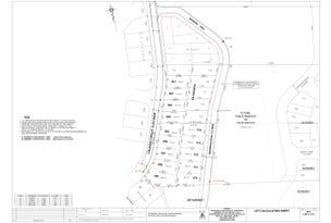 Lot 121, Browning Road, Edmondson Park, NSW 2174