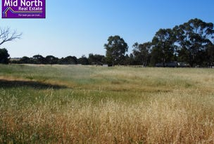 Lots 30 & 31 Woolshed Flat Road, Rhynie, SA 5412