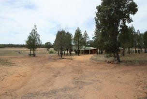 2246 Newell highway, Gilgandra, NSW 2827