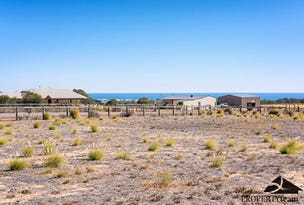 201 Wittenoom Circle, White Peak, WA 6532
