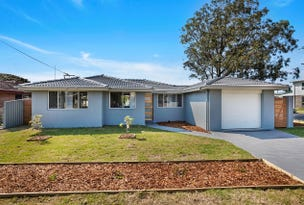 2 Windle Street, Lake Illawarra, NSW 2528