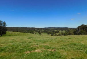 2875 Mt Lindesay Road, Tenterfield, NSW 2372