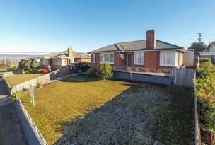 45 Parua Road, Newnham, Tas 7248