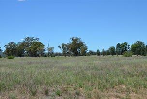 81 Yarranabee Rd, Baan Baa, NSW 2390