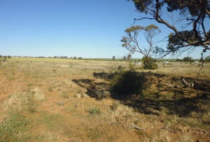 L2 The Cattle Track, Crystal Brook, SA 5523