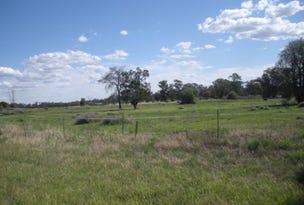 Lot 396 Bulgandramine Road, Peak Hill, NSW 2869