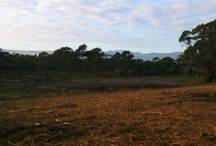 274 Badger Corner Road, Flinders Island, Tas 7255