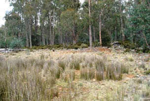 Lot 94, 11 Wilburvlle Road, Wilburville., Arthurs Lake, Tas 7030
