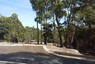 250 Back Cam Road, Somerset, Tas 7322