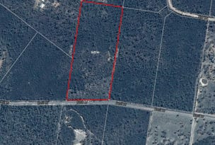 Lot 42, Basil Drive, Forest Ridge, Qld 4357