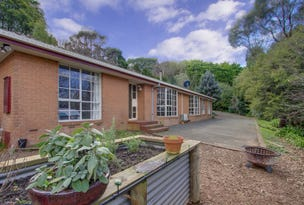 9 Beenak East Road, Gembrook, Vic 3783