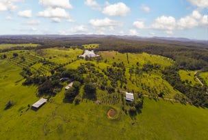 387 Tamban Rd, Tamban, NSW 2441