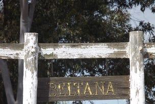 136 Larkers Road, Blighty, NSW 2713