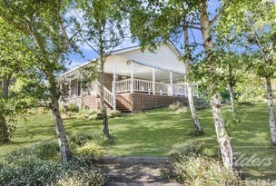 197 Los Angelos Road, Swan Bay, Tas 7252