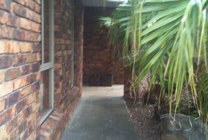 46 Terowi St, Sunnybank Hills, Qld 4109