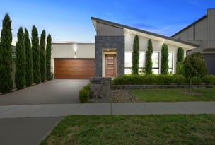 88 Blizzard Circuit, Forde, ACT 2914